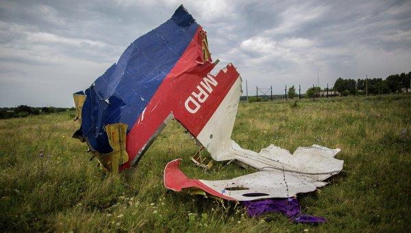 Обломки лайнера Boeing 777 Малайзийских авиалиний, потерпевшего крушение в районе города Шахтерск Донецкой области.