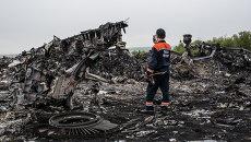Обломки Boeing 777 компании Malaysia Airlines в районе села Грабово в Донецкой области. Архивное фото