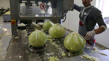 Производство овощных консервов на фабрике. Архивное фото