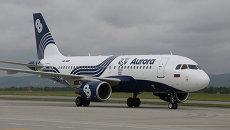 Тигриный самолет, созданный в рамках сотрудничества  Центра Амурский тигр и авиакомпании Аврора. Архивное фото