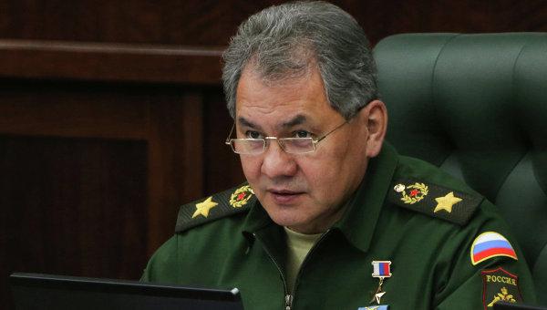 Министр обороны Сергей Шойгу, архивное фото
