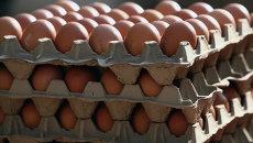 Яйца. Архивное фото