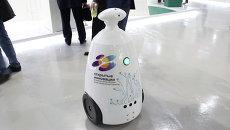 Роботы разговаривали с посетителями на выставке Открытые инновации