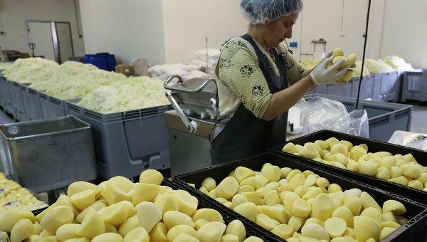Производство овощных консервов на фабрике в Калининграде. Архивное фото