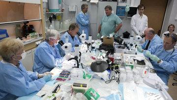 Российские и американские биологи изучают образцы тканей с Биона-М1 в стенах ИМПБ РАН