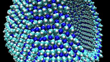Компьютерная модель мембраны клетки, способной жить на поверхности Титана