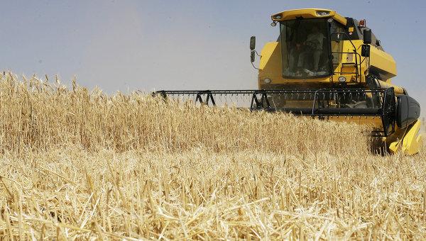 Уборка урожая зерновых культур. Архивное фото