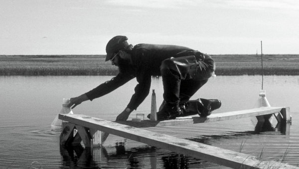 Один и тот же арктический пруд на Аляске в 1976 и 2012 годах