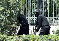 Силы безопасности Туниса у национального музея