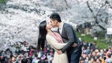 Влюбленные целуются на фоне цветущей вишни в городе Ухань, Китай