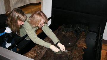 Ученые отделяют волокна шерсти от ложа девушки из Эгтведа