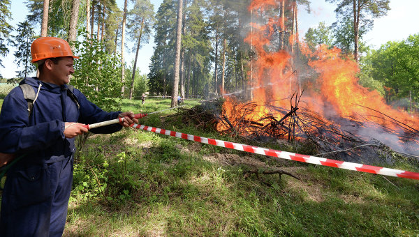 Тушение лесного пожара. Архивное фото