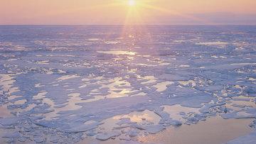 Лето в Арктике. Архивное фото