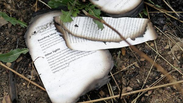 Страницы из книги на месте крушения малайзийского самолета Boeing 777 в районе города Шахтерск Донецкой области