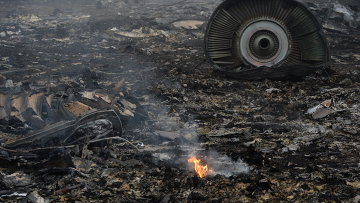 На месте крушения малайзийского самолета Boeing 777 в районе города Шахтерск Донецкой области. Архивное фото