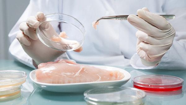 Проверка куриного мяса в лаборатории, архивное фото