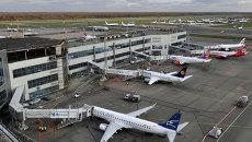 Аэропорт Домодедово. Архивное фото
