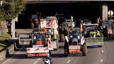 В Париж на 1365 тракторах: как фермеры ехали протестовать в столицу Франции