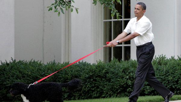 Президент США Барак Обама гуляет с собакой на Южной лужайке Белого дома. Архивное фото