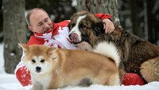 Прогулка Владимира Путина с собаками в Московской области