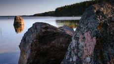 Природный заказник Березовые острова на Финском заливе