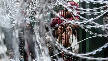 Мигранты на границе Венгрии и Сербии. 16 сентября 2015