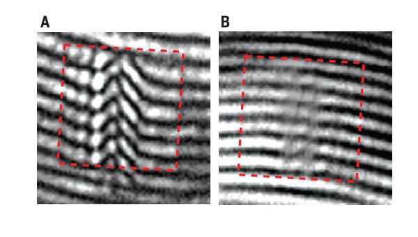 Микрофотографии наночастицы под отключенным (справа) и включенным (слева) плащом-неведимкой