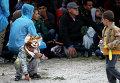 Дети играют на хорватско-венгерской границе