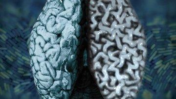 Мозг на фоне колонии бактерий