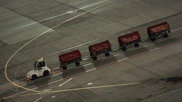 Багаж покидающих Египет российских туристов, доставленный спецбортом МЧС России, в терминале А аэропорта Внуково в Москве. Архивное фото