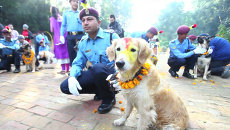 Полицейские надевали собакам венки из цветов на фестивале Яма Панчак в Катманду