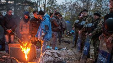 Мигранты на границе между Грецией и Македонией