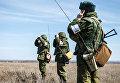 Военные учения на полигоне