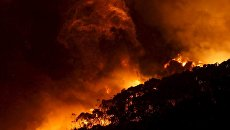 Лесной пожар на реке Уай, Австралия