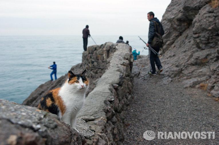 Рыбаки на скалистом берегу вдоль Голицынской тропы в поселке Новый Свет в Крыму