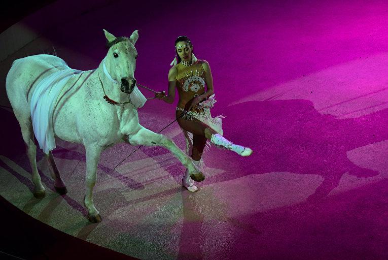 Артистка из России на Международном цирковом фестивале в Будапеште