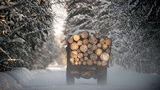 Зима в Омской области. Архивное фото