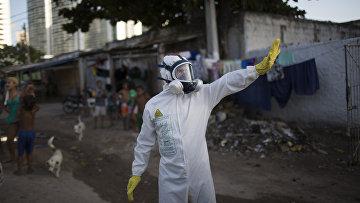 Операции по уничтожению комаров переносчиков вируса Зика в Ресифи. Архивное фото