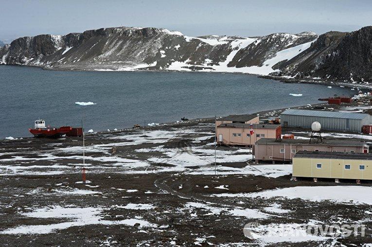На острове Ватерлоо в Антарктиде