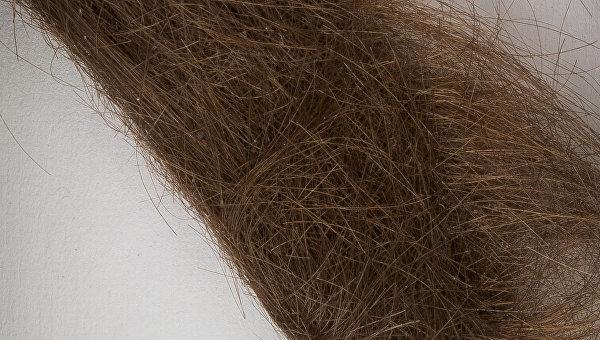 Волос музыканта группы Beatles продали на аукционе за 35 тысяч долларов