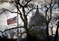 Американский флаг перед Капитолием в Вашингтоне