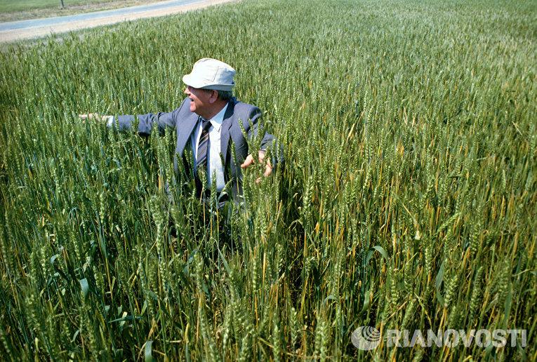 Президент СССР Михаил Сергеевич Горбачев на целинных землях Казахстана