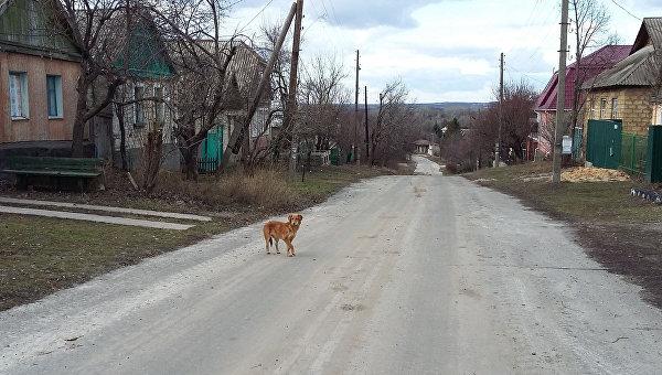 Деревня Веселая Гора на Донбассе. Архивное фото