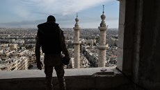 Военнослужащий Сирийской Арабской армии в городе Алеппо. Архивное фото