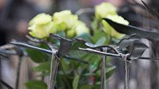 Фигурки журавлей на акции памяти жертв авиакатастрофы над Синаем в Петропавловской крепости. Архивное фото