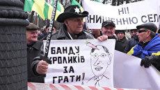 Банду кроликов за решетку – фермеры вышли на митинг против Яценюка в Киеве
