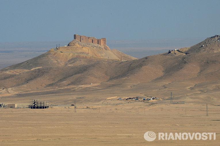 Вид на старый замок на холме со стороны позиций правительственной армии Сирии в 7 км к западу от города Пальмира в Сирии