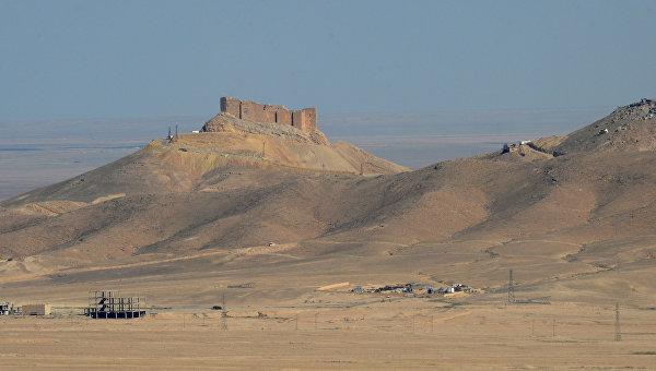 Вид на старый замок на холме со стороны позиций правительственной армии Сирии в 7 км к западу от города Пальмира в Сирии. Архивное фото