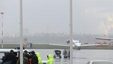 Сотрудники оперативных служб в аэропорту Ростова-на-Дону, где при посадке разбился пассажирский самолет Boeing-737-800