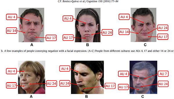 Универсальное выражение лица, обозначающее нет